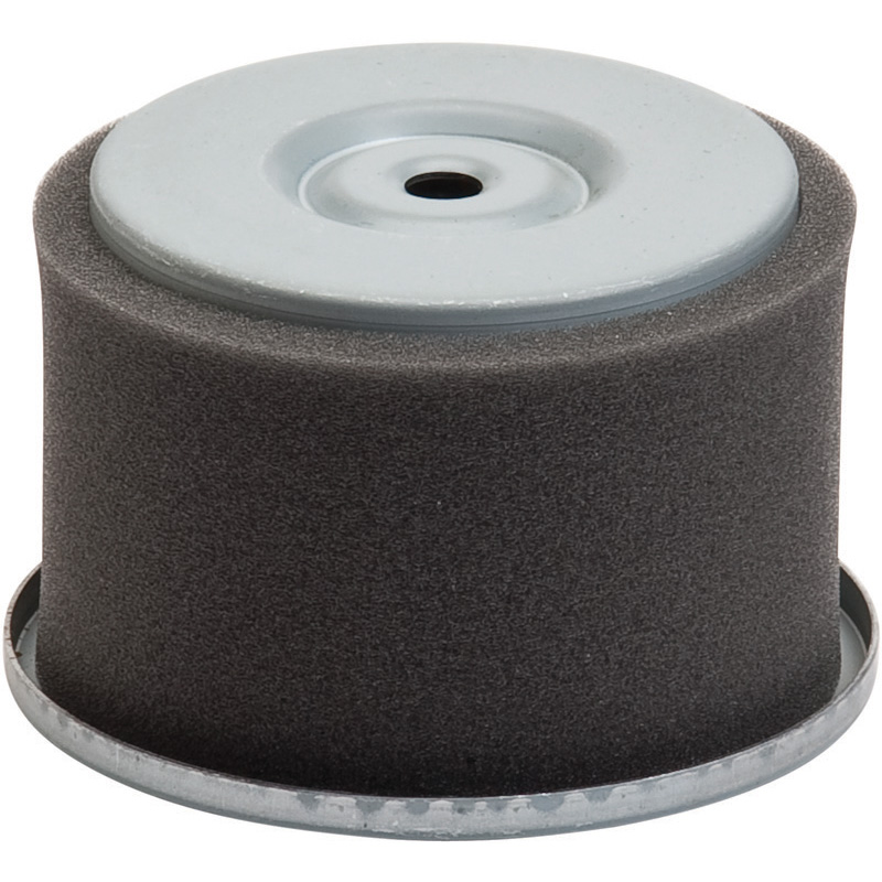 Oregon Replacement  Air Filter Wisconsin Robin Part Number 30-410