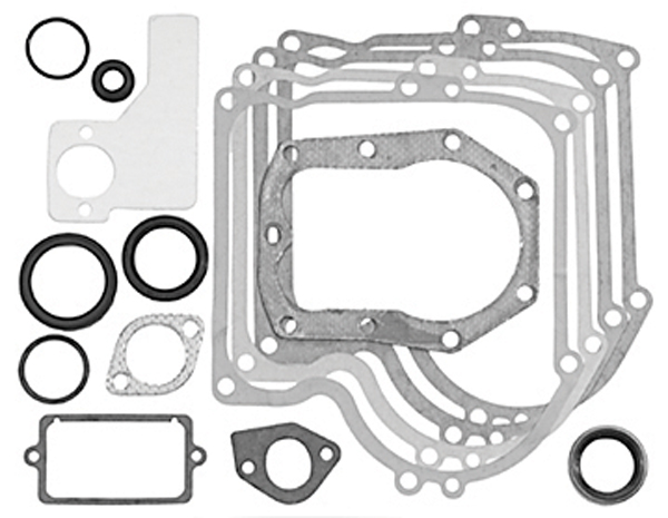 Oregon Gasket Set Part Number 393411 49-412